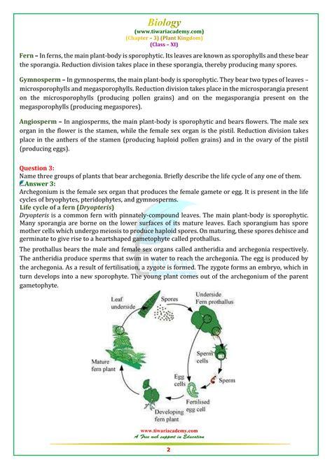 ncert solutions  class  biology chapter  plant