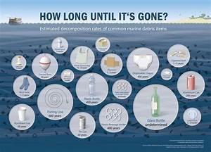 Wie Lange Dauert Es Bis Plastik Verrottet : m ll im meer so lange dauert es bis er verrottet ist ~ Lizthompson.info Haus und Dekorationen