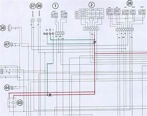 2006 Kawasaki Ninja 650r Wiring Diagram  2006  Free Engine