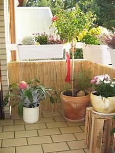 Bambus Auf Balkon : bambus matte haltbarkeit der sichtschutzmatte wichtige ~ Michelbontemps.com Haus und Dekorationen