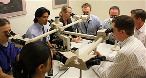 Forensic Pathology Fellowship  Nm Office Of The Medical. Free Vps Hosting No Credit Card. Phone Number For Windows 8 Support. Top San Diego Real Estate Agents. Grand Canyon University Student Portal. Electronic Employee Monitoring. Best Rhinoplasty Surgeon Nyc. Hair Transplantation In Hyderabad. Haron Jaguar Land Rover Pre Military Training