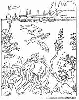 Coloring Diver Sea Deep Pages Scuba Printable Maze Sheet Drawing Activity Diving Fish Template Getdrawings Getcolorings Dive Sketch Suit Cartoon sketch template