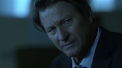 With Alec Baldwin Out, Brett Cullen Has Been Cast as ...