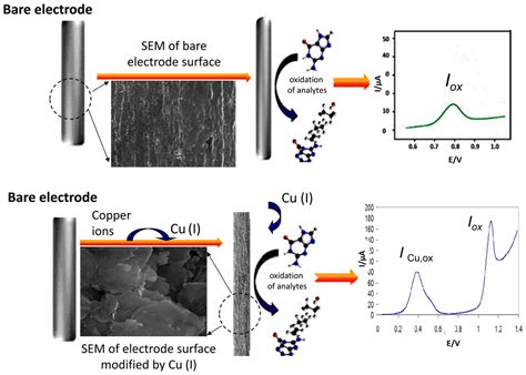 sensors  full text functionalized solid electrodes  electrochemical biosensing