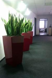Pflanzen Zur Luftbefeuchtung : raumbegr nung innenraumbegr nung objektbegr nung terrassenbegr nung lechuza fiberstone ~ Sanjose-hotels-ca.com Haus und Dekorationen