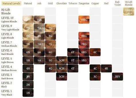 Best 25+ Argan Oil Color Chart Ideas On Pinterest