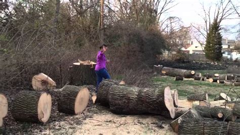 Removing Trees From Backyard by Back Yard Clean Up Tree Removal Day 1