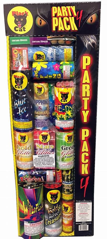 Party Pack Cat Fireworks Discount Superstore Assortments