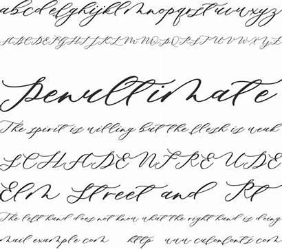 Minimalist Font Script