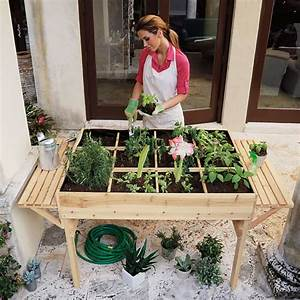 Garden, Tables, Help, You, To, Grow, Veggies, Herbs, And, Flowers, Anywhere