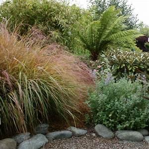 Pflanzen Für Schattengarten : schattengarten mit tropischen pflanzen gestalten ~ Sanjose-hotels-ca.com Haus und Dekorationen