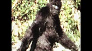 1 of 82 Patterson Gimlin Bigfoot best clips film(2009 ...