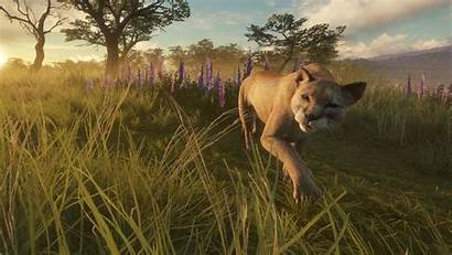 Wild Call Thehunter Fernando Parque Xbox Animal