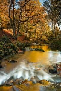Autumn Northern Ireland