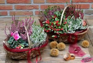 Balkonpflanzen Herbst Winter : gr n erleben heiden spa ~ Sanjose-hotels-ca.com Haus und Dekorationen
