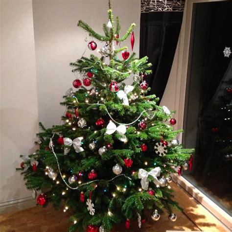 christmas trees leeds bradford yorkshire