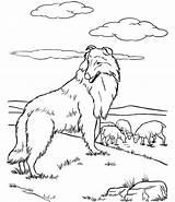 Shepherd Coloring German Dog Realistic Colouring Australian Popular Library Getdrawings Drawing Coloringhome sketch template