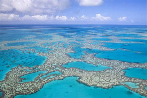The Great Barrier Reef on the brink | New Scientist