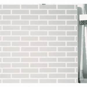 Brique De Parement Blanche : brique de fa ade parement fini gris ou blanc lisse ~ Dailycaller-alerts.com Idées de Décoration