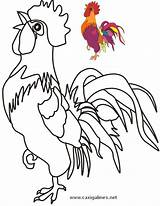 Coloring Chicken Rooster Patterns Hen Roosters Colouring Quilt Pattern Visit sketch template