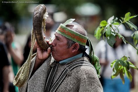 Mapuche Culture & Traditions - 4 Day Tour Elicura Valley
