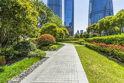 Commercial Landscaping Sunny Miami Park South Landscape