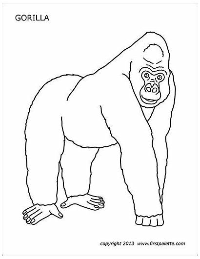 Gorilla Printable Coloring Pages Craft Preschool Templates