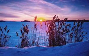 Sonne Im Winter : pin schnee sonnenuntergang sonne baum winter ~ Lizthompson.info Haus und Dekorationen