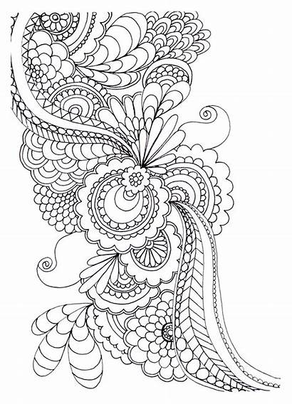 Adult Colouring Pages Coloring Flowers Drawing Drawings