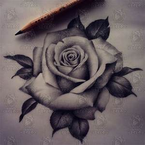 Tattoo Realistic rose drawing by Madeleine hoogkamer ...