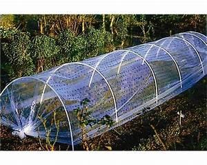 Film Plastique Pour Serre : une serre pour prot ger et cultiver des plantes exotiques ~ Premium-room.com Idées de Décoration