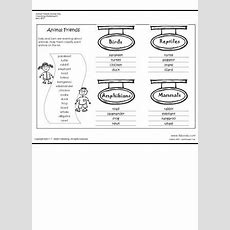 Animal Worksheet New 616 Worksheet On Animal Classification