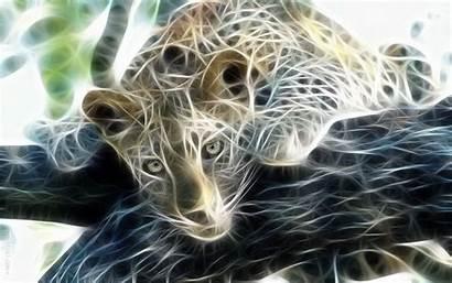 Animal Digital Leopard Wallpapers Wild Nature Seen