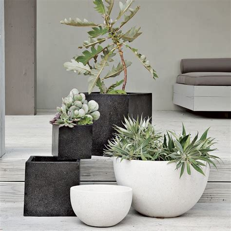 contemporary pot plants 25 best ideas about contemporary planters on pinterest contemporary gardens contemporary