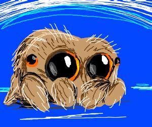 lucas  spider pio drawception