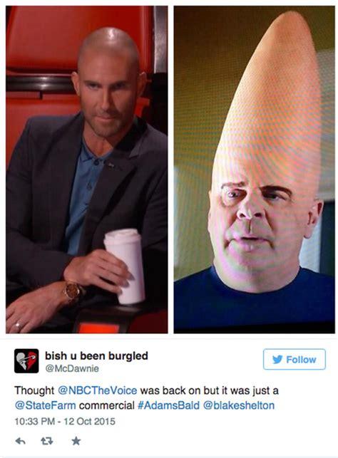 Adam Levine Meme - adam levine shaved head memes hollywood life