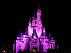 Cinderella Castle at Night, Walt Disney World | Flickr ...