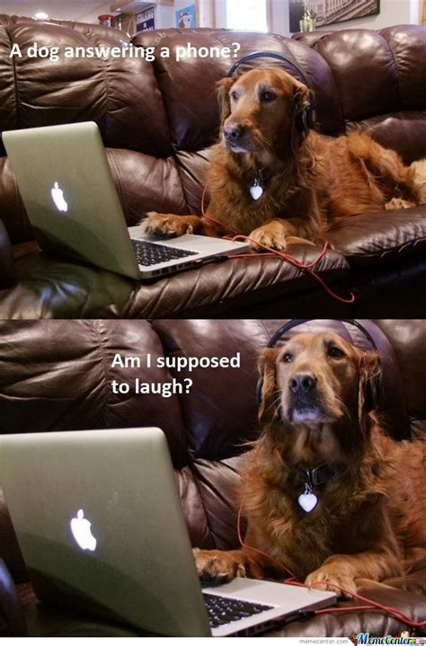 Dog On Phone Meme - a dog is answering phone am i supposed to laugh by serkan meme center