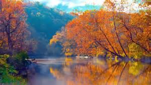 herfst achtergrond met rode bladeren hd wallpapers
