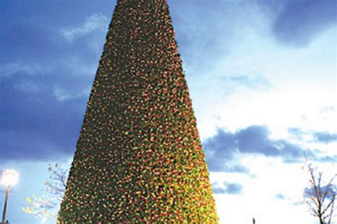 artificial christmas tree from normandy is largest ever