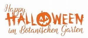 Schöne Halloween Bilder : halloween das schaurig sch ne fest f r jung und alt bgbm ~ Eleganceandgraceweddings.com Haus und Dekorationen