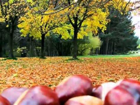 La Panera en otoño El Espinar (Segovia) YouTube
