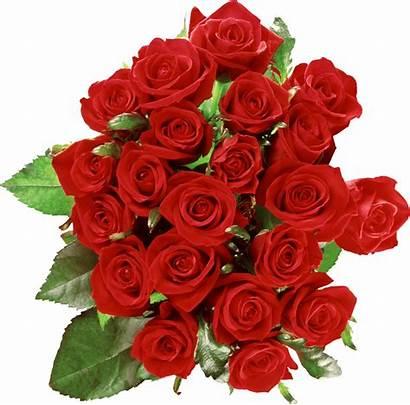 Transparent Buke Bouquet Flower Roses Pngio