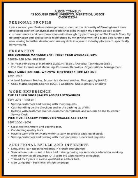 Curriculum Vitae Sle by 9 Curriculum Vitae Exle Student Theorynpractice