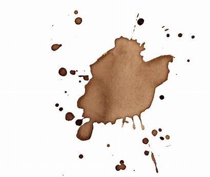 Coffee Splatter Transparent Stains Vol Onlygfx Px