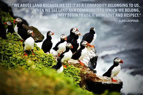 beautiful quotes   inspire     nature