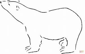 Polar Bear Outline Images   Search Results   Calendar 2015