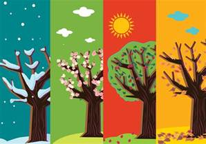 four seasons abstract trees free vector