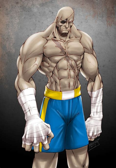 1101 Best Images About Street Fighter Alpha On Pinterest