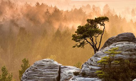 Nature Wallpapers, Widescreen, Wallpaper Of Nature, Free